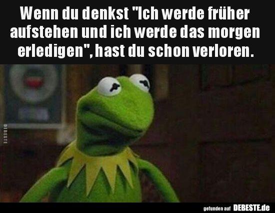 Pin Von Melanie Fischer Auf Mupets Witzige Spruche Spass Spruche
