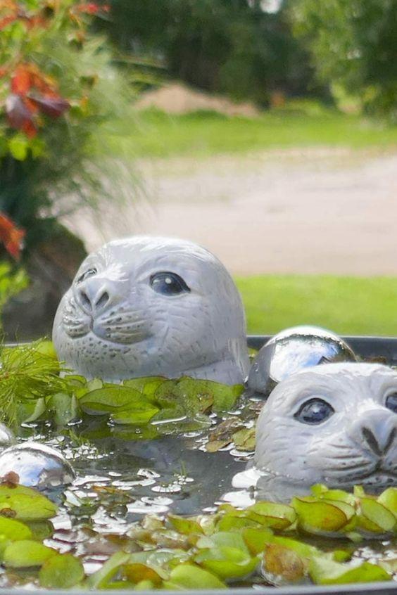 Keramik Schwimmtiere Robbe mit Heuler hochwertig lasiert und wasserdicht Die 2 lustigen Seehundköpfe schauen neugierig aus dem Wasser,Robbe mit Ihrem Heuler Baby schwimmen zufrieden in Ihrem Teich. Die Seelöwen sind aus hochwertiger Keramik gefertigt, die Ihnen in 2 Größen geliefert werden. Die große Robbe hat einen Durchmesser von 8cm, bei einer Höhe von 10cm, der kleine Heuler 6,5cm Durchmesser bei 7cm Höhe... *Pin enthält Werbelinks