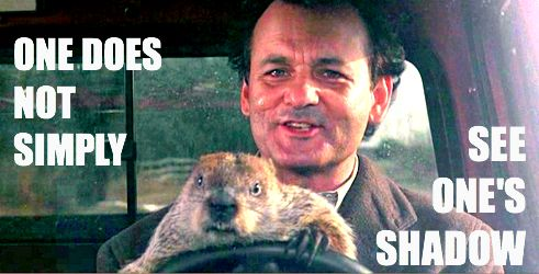 "Groundhog Day Movie Quotes Entrancing Groundhog Day Quote ""don't Drive Angry."" Also ""one Does Not"