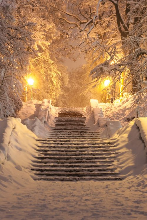 Winter fairy tail, Kiev, Ukraine: