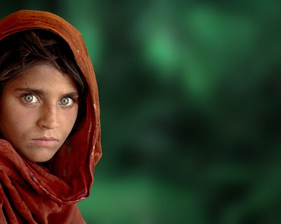 the afghan girl wallpaper