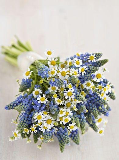Wedding Inspiration: Daisy and Muscari bouquet #rockmyspringwedding @Rock My Wedding