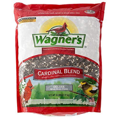 Wagner S 62032 Cardinal Blend 6 Pound Bag Black Oil Sunflower Seeds Wild Bird Food Food Net