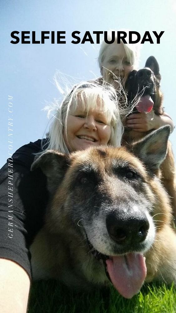 Maddie loved by Debbie and Titan loved by Kim Gaskin