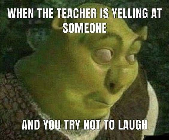When The Teacher Is Yelling At Someone And You Try Not To Laugh Hilarious Funny Lol Lmao Comedy Lmfa Very Funny Pictures Crazy Funny Pictures Shrek Memes