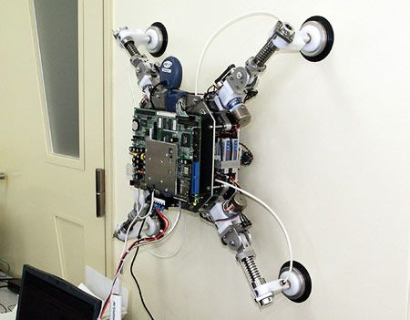 Wall Walking Robot