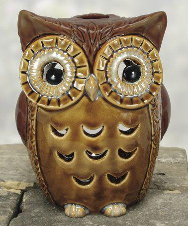 Look what I found on #zulily! Owl Lantern by Coyne's & Company #zulilyfinds