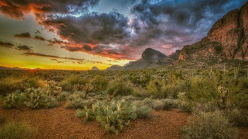 Sundowner  ©CEBImagery