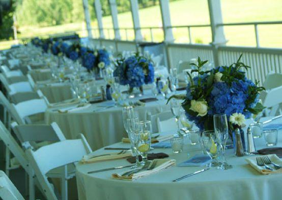 round table blue hydrangeas