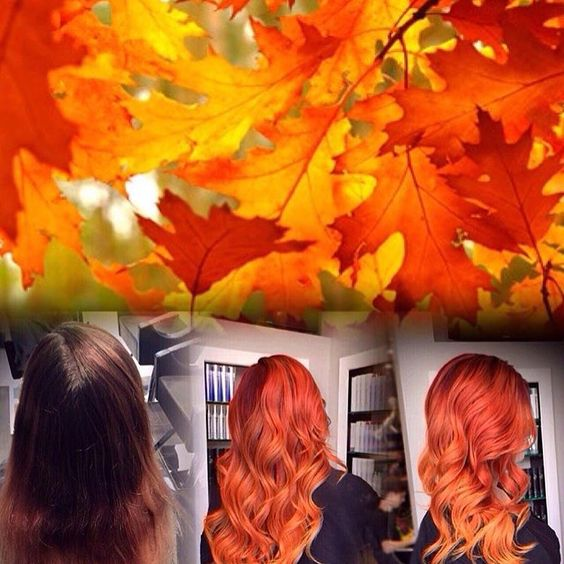 Hair by: Angus Mitchell Orange toned ombre- Fall/Autumn professional hair color