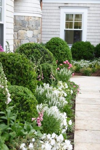 Love all the boxwood with florals combos. Janice Parker Landscape Design - IDA Award Winner  Ferrill Bancroft via Urban Farmgirl onto Garden and Landscaping