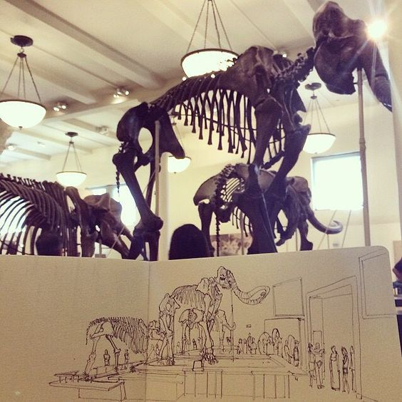 #sketch #doodle #urbansketch #urbansketcher #urbansketchers #urbansketching #travelbook #traveljournal #travelnotebook #travelnotebook #art #paper #pen #pencil #artsy #instaart #instagood #gallery #masterpiece #creative  #illustration #drawing #draw #picture #artist #nyc #newyork #dinosaur #mammoth #amnh