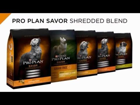 Review Of Costco Kirkland Brand And Pro Plan Savor Dog Food Dog