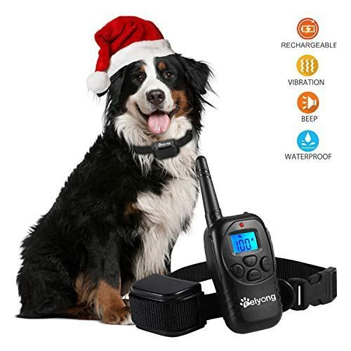 Dog Training Collar Shock Collar Dogs Rechargeable Dog Shock