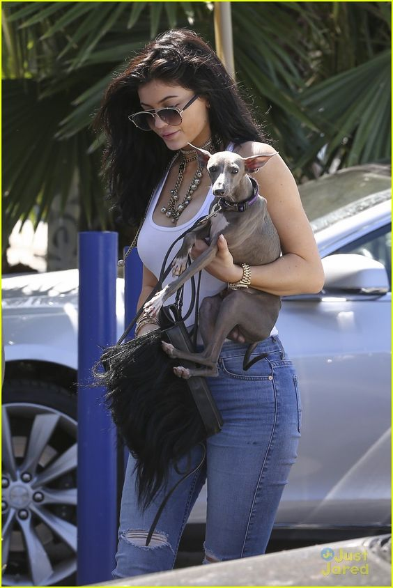 kylie jenner tyga special case khloe kardashian 34