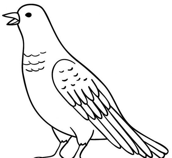 24 Gambar Burung Kartun Mewarnai Lengkap Dari Mewarnai Gambar Pemandangan Hewan Buah Kartun Orang Dll Tentu Hal Tersebut Membuat Gambar Burung Kartun Burung