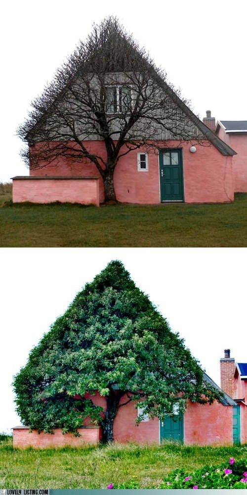 pink and green pitched roof house