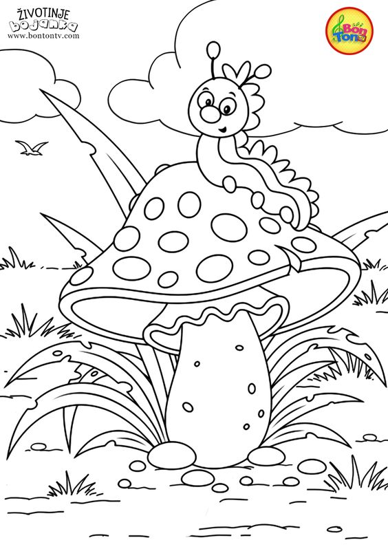 Animals Coloring Pages For Kids Free Preschool Printables Zivotinje Bojanke Animal Coloring Bo Animal Coloring Pages Animal Coloring Books Coloring Books