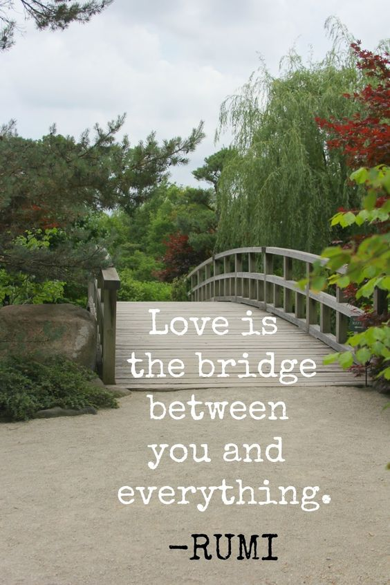 Photo by Michele of Hello Lovely Studio and Rumi quote. Love is the bridge between you and everything. #rumi #lovequote #hellolovelystudio #bridge