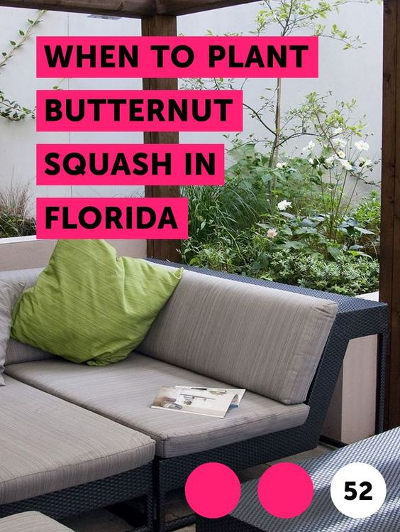 When To Plant Butternut Squash In Florida Organic Lawn Organic Lawn Fertilizer Lawn Fertilizer