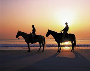 Horseback riding on the beach at sunset? Where do we sign up?