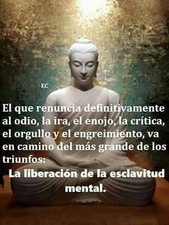 Foto #consejosserfeliz #reflexionesdevida