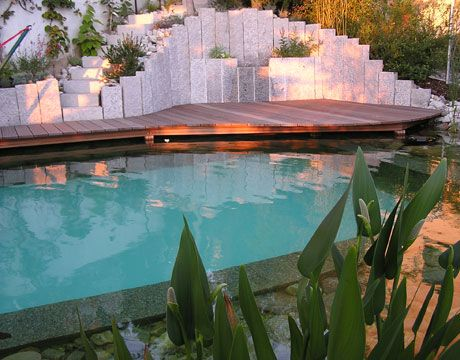 After we build our super sustainable, eco-friendly house, we can put in a natural pool.