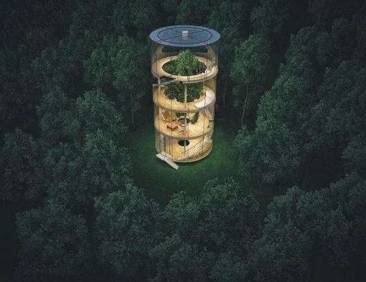 Increible casa de vidrio con un árbol en su interior - GatoPanda