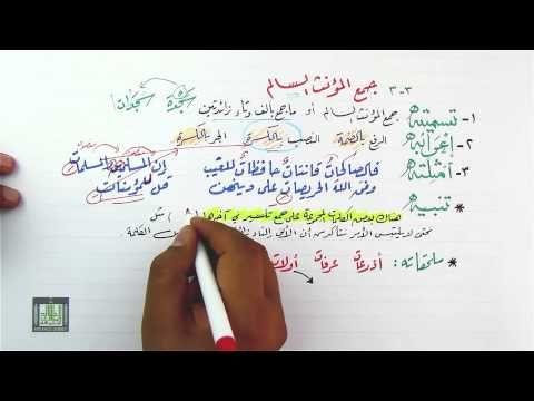 جمع المؤنث السالم وعلامة إعرابه 3 3 Youtube Bullet Journal Journal Calligraphy