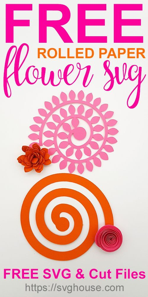 Free Flower Svg : flower, Rolled, Paper, Flower, Craft, Tutorial., Templates, Printable,, Templates,, Template