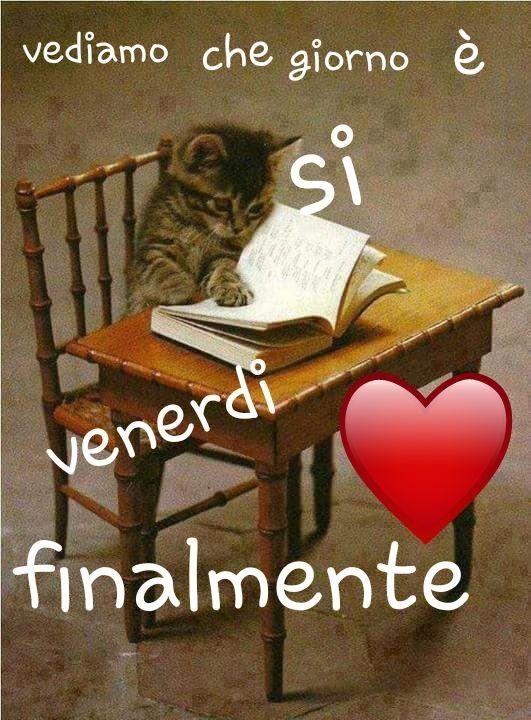 Buon Venerdì Buon Giorno Italia Venerdì Divertente