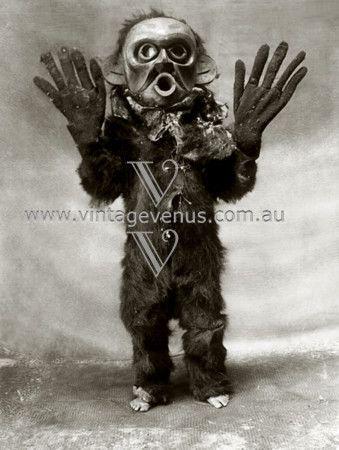North American Indian Ceremony Mask  Code: PEX205
