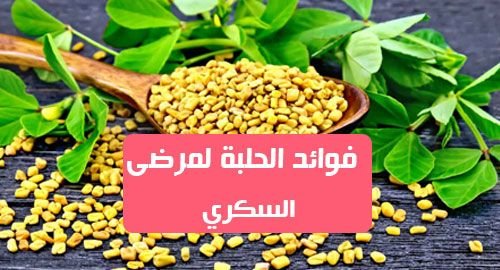 فوائد الحلبة لمرضى السكريتحتوي بذور الحلبة على الألياف والمواد الكيميائية الأخرى التي قد تبطئ عملية الهضم وامتصاص الجسم للكربوهيدرات والس Vegetables Food Beans