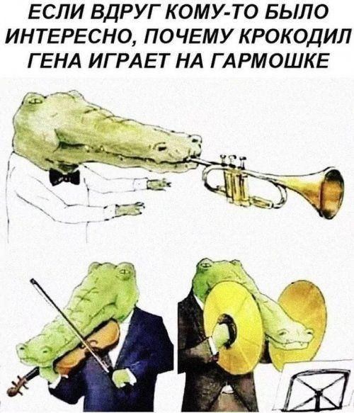 Prazdnichnye Foto Prikoly I Ne Tolko 39 Sht Veselye Memy