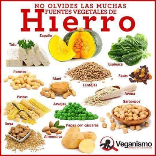 Alimentos con hierro alimentos que contengan hierro fe pinterest - Hierro alimentos que lo contienen ...