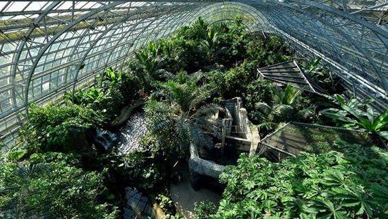 GRANDES SERRES DU JARDIN DES PLANTES EXPOSITION MILLE & UNE ORCHIDÉES http://infos-75.com/