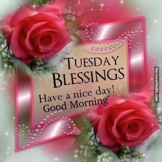 Good morning sister and yours, have a lovely Tuesday, God bless, ☕
