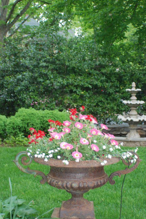 in my garden, early summer 2011