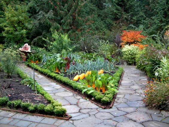love the path and center garden with squash, carrots, onions, and swiss chard surrounded by greens: