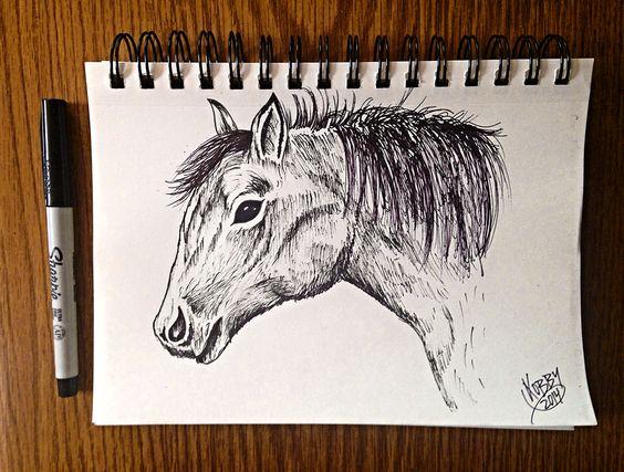 """""""El caballo blanco de Napoleon"""" #horse"""