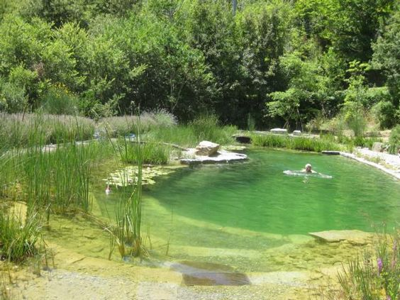 Small swimming pond lined with granite slabs eco for Small natural pond