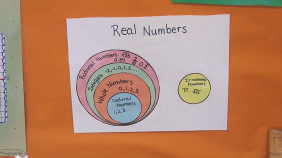 rational numbers graphic organizer: