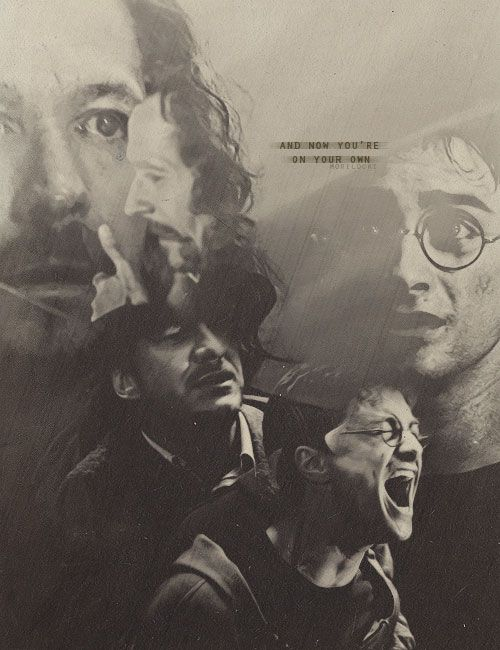 """""""And now you're on your own."""" Harry/Sirius"""