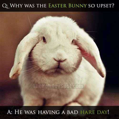 22 Funny Easter Memes Jokes 2020 With Funny Egg Bunny Pics