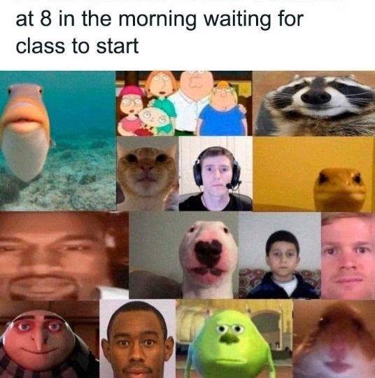 40 Dank Meme Jokes Of All Time Stupid Memes Funny Relatable Memes Stupid Funny Memes