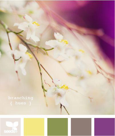 branching hues