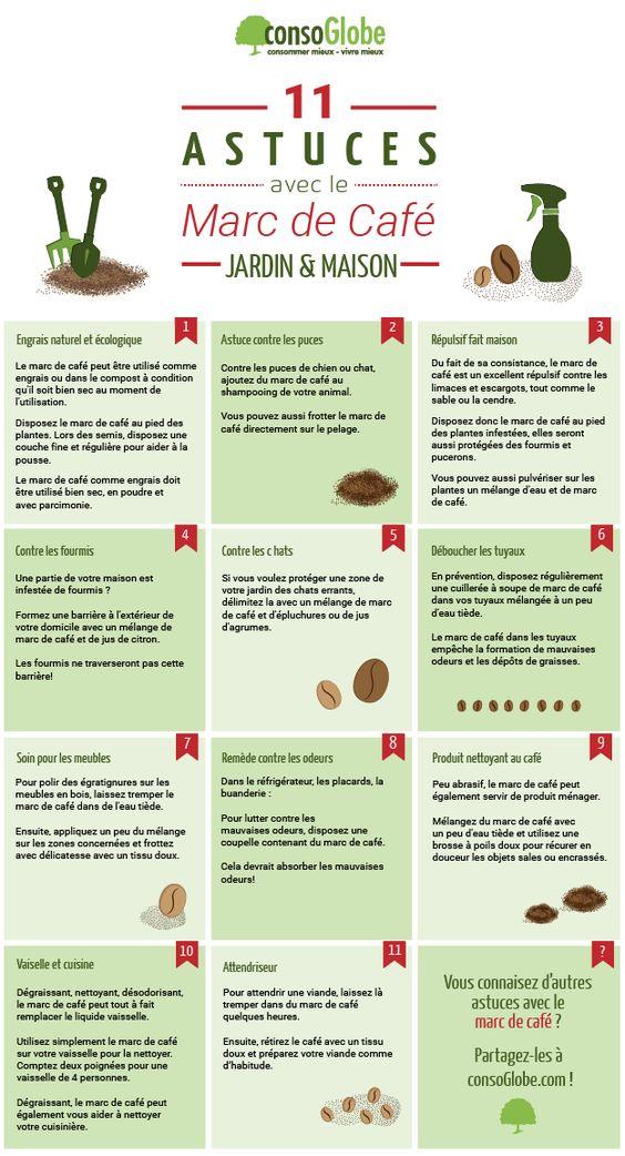 Découvrez 6 astuces et recettes pour réutiliser le marc de café, très économique et écologique, dans votre maison et jardin.