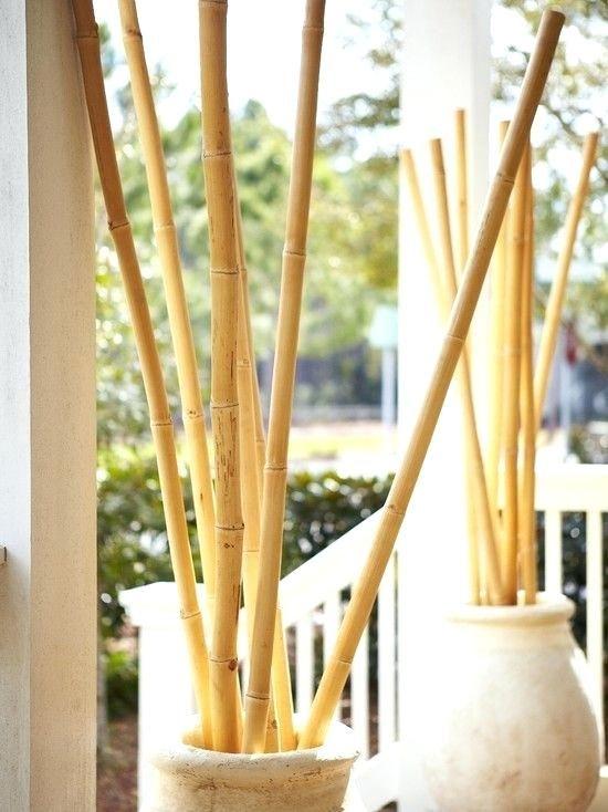 Decorative Bamboo Sticks In Vase.Shiny Decorative Floor Vases Bamboo Sticks Graphics