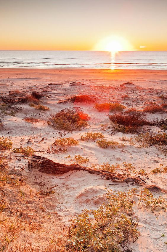 Malaquite Beach Sand Dunes And Gulf Of Mexico At Sunrise