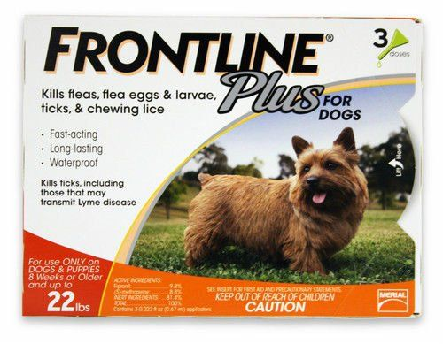 Frontline 3-Pack 11 to 22-Pound Plus Dogs Flea and Tick Treatment, Small, Orange - http://www.petsupplyliquidators.com/frontline-3-pack-11-to-22-pound-plus-dogs-flea-and-tick-treatment-small-orange/